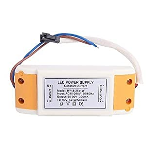 DDL(18-25)x1W LED Driver Power Source Converter for Ceiling Light (60-90V,300mAh) by DDL Installation/power