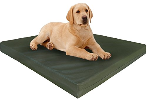 Xxl Extra Large Dog Beds 55 My Pet Store