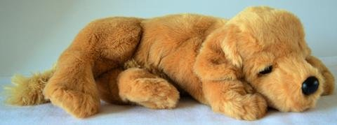 reclining-golden-retriever-stuffed-animal-therapy-for-people-with-memory-loss-from-aging-and-caregiv