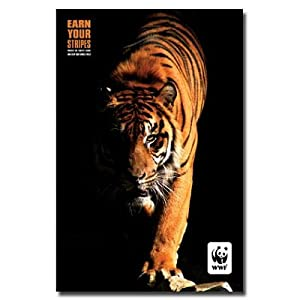 World Wild Life Tiger 22X34 Poster Animal Photo 9932