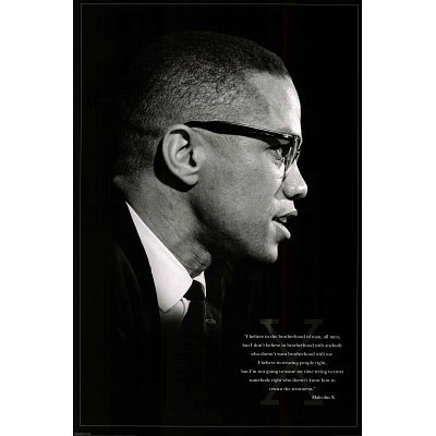 (24x36) Malcolm X (Brotherhood) Art Poster Print