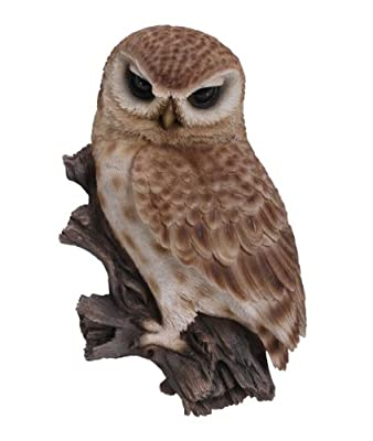 Wall Art Little Owl Plaque OGD232