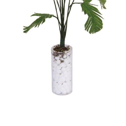 die beste 1 12 gr ne bananenbaum im wei en flasche. Black Bedroom Furniture Sets. Home Design Ideas