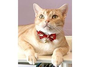 Necoichi Japanese Kimono Bow Tie Cat Collar