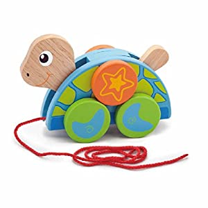 Wooden Pull-Along Turtle by Viga