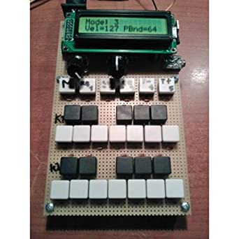 Miniature Programmable Synthesizer