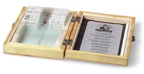 10-vetrini-preparati-microscopio-konus-biologia-1-4881