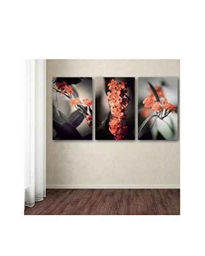 Philippe Sainte-Laudy Soft Grey 3-Panel Art Set