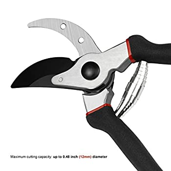 SHINE HAI Professional Hand Pruner Bypass Pruning Shears with Safety Lock, Tree Trimmers Secateurs, Garden Shears, Clippers for the Garden