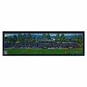 MLS San Jose Earthquakes Wood Sign, 9 x 30-Inch by WINAV