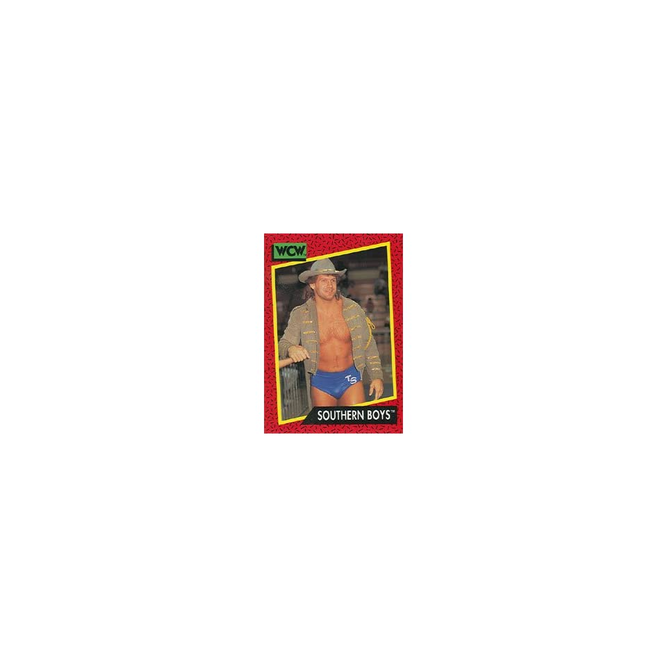 1991 WCW Impel Wrestling Trading Card #133  Southern Boys