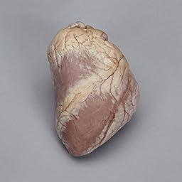 Perfect Solution Preserved Sheep Heart, Plain, 1 Per Bag