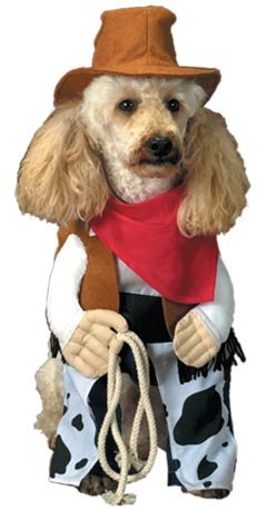 awesome for any cowboy theme party too pet western cowboy dog costume
