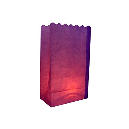 Quasimoon Purple Paper Luminaries / Luminary Lantern Bags Path Lighting (10 PACK) by PaperLanternStore