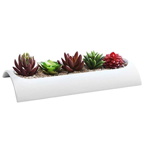 Curved Modern Rectangular Ceramic Flower Dish, Succulent Planter Window Box, White (Interior Window Planter compare prices)