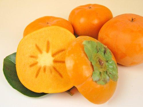 浜北産次郎柿(露地栽培)5個または6個入り【ご自宅用簡易包装】
