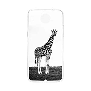 a AND b Designer Printed Mobile Back Cover / Back Case For LG Google Nexus 6 (Nexus_6_2239)