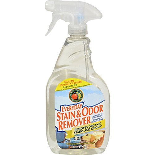 Earth Friendly Stain and Odor Remover Spray - Case of 6 - 22