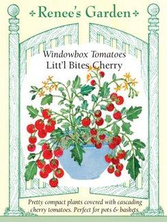 "Tomatoes, Windowbox ""Litt'l Bites Cherry"""