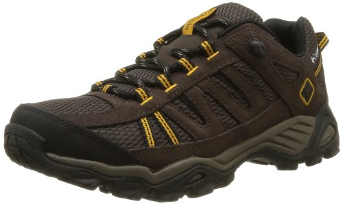 Columbia Men's North Plains Trail Shoe, Stout/Yellow Curry, 9.5 M US