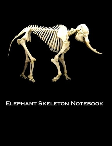 Elephant Skeleton Notebook: 100 pages, lined