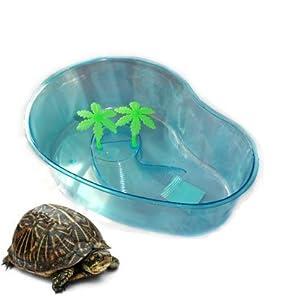 961432 vasca vaschetta tartaruga tartarughe piscina for Piscina tartarughe