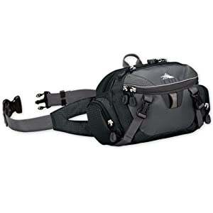High Sierra Envoy Lumbar Pack by High Sierra