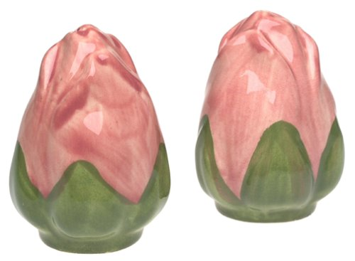 Franciscan Desert Rose Salt & Pepper Set