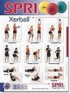 SPRI Xerball Exercise Wall Chart