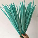 Maslin 100pcs/lot Natural&Real Pheasant Tails Feather Size 50-55cm Long Ringneck Pheasant Plumes for Carnival Decorations 14 Colors - (Color: Mint Green) (Color: mint green)