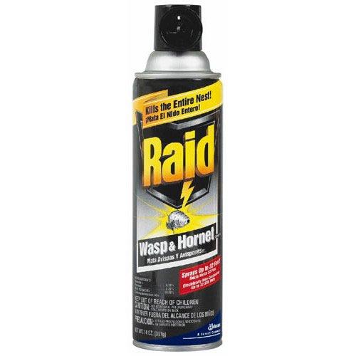 Raid Wasp and Hornet Killer,