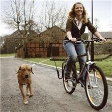 Springer Bicycle Jogger