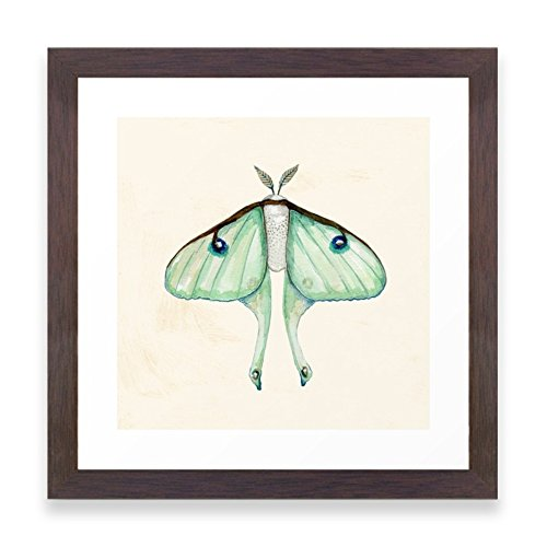 Society6 Luna Moth Framed Print Conservation Walnut MINI (Luna Moth Framed compare prices)