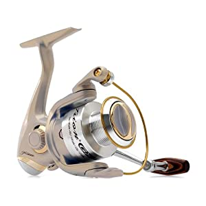 Pflueger 4520GXX Trion Spinning Reel, 105-Yard/4-Pound