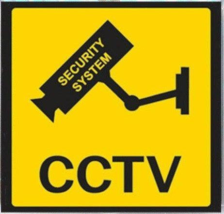 Imagen de Al aire libre cámara domo de seguridad falsa con luz parpadeante
