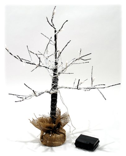 2 Ft Led Lighted Bare Branch Tree Dusted With Snow - 6 Hour Timer Function