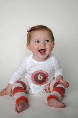 Picky Sticky Baby Photo Monthly Onesie Stickers (Missy Fissy)