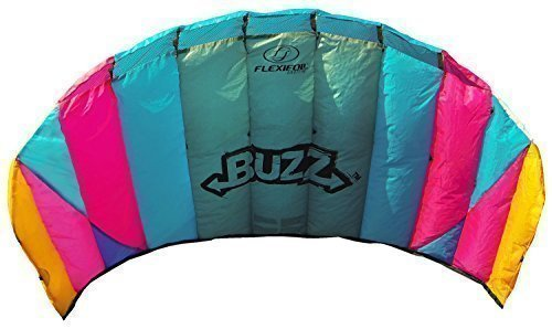 Flexifoil 1.45m Power Kite with 90 Day Money Back Guarantee! - Buzz Sport Foil By World Record Winning Designer of 2-line and 4-line Power Kites - Safe, Reliable and Durable Family Orientated Power Kiting, Kite Training and Introductory Traction Kiting (Power Kiting compare prices)