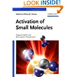 Activation of Small Molecules: Organometallic and Bioinorganic Perspectives