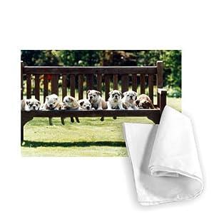 Pugs on a Park Bench - 1995 - Tea Towel 100% Cotton - Art247 - Tea Towel - 46x70cm