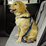 SMALL / MEDIUM - RED - Dog Car/Truck Safety Harness - Adjustable Nylon Web with Quick Release Buckles