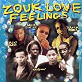 echange, troc Various Artists - Zouk Love Feelings