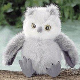 "Baby Grey Owl 4.5"" - 1"