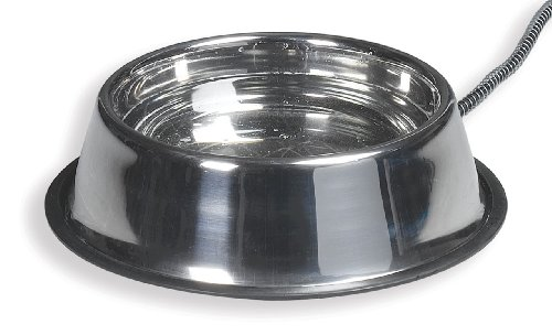 Allied Stainless Steel Heated Pet Bowl,  5-Quart