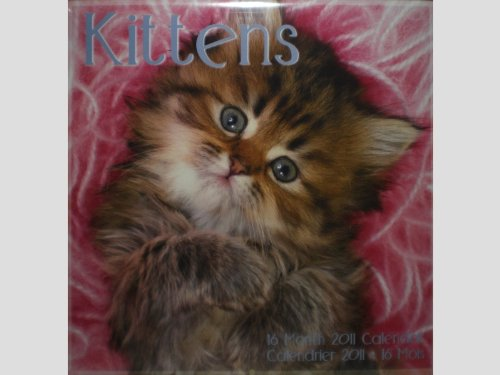 Kittens Cats 16 Month 2011 Wall Calendar