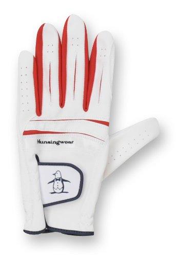 DESCENTE (Descente) Golf guantes MQ8020 XN10 S