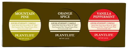 Aromatherapy Candles- Vanilla Peppermint, Orange Spice, Mountain Pine- Made with 100% Pure Essential Oils