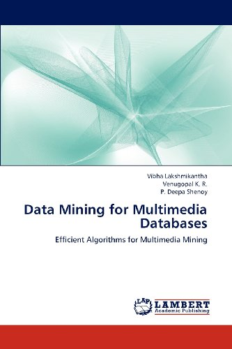 Data Mining for Multimedia Databases