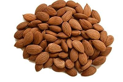 Sweet Raw Apricot Seeds, No Shell - NUTS U.S. by NUTS U.S.