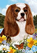 Cavalier King Charles Blenheim Dog - Tamara Burnett Summer Flowers Outdoor Garden Flag 12'' x 17''